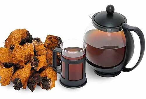 白桦茸茶图片