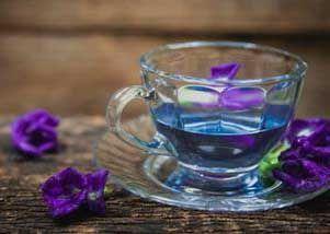 蝴蝶豌豆茶图片