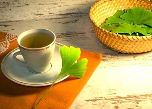 银杏叶茶图片