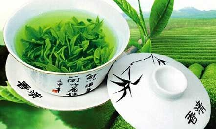 绿茶是什么意思