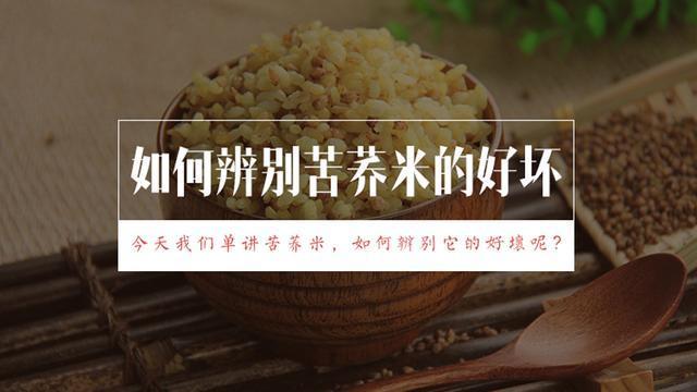 kuqiaomi好的苦荞米长什么样,怎么吃?图片