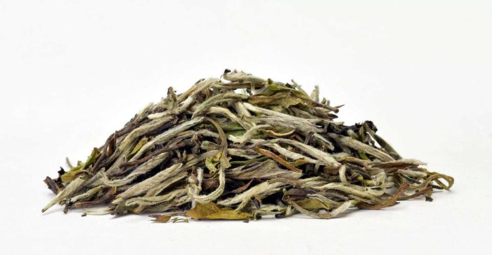 春白茶为什么备受青睐?图片