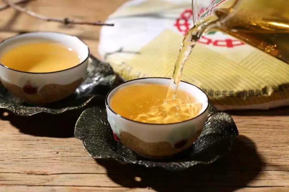 普洱茶与空气的生命之旅图片