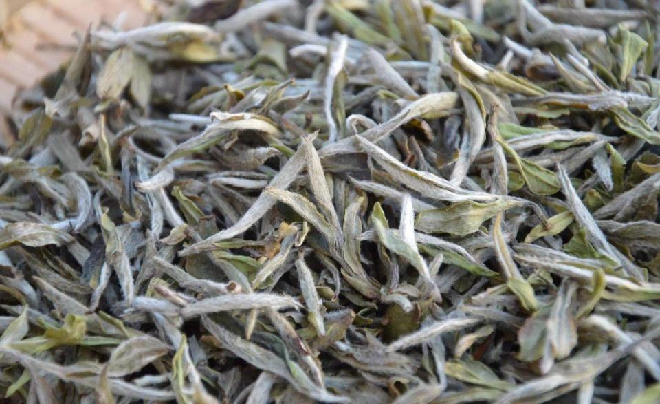 白茶应该如何闻香?方法很重要图片